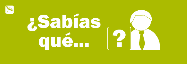 Green Cube también despega en Guadalajara.